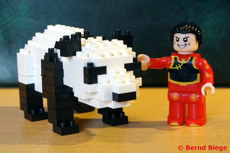 Panda von Brix Play, mit freundlichem Betreuer.