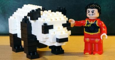 Der Panda und sein Freund ...